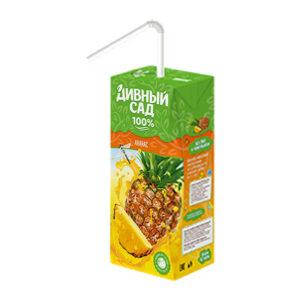Ananāsu sulas dzēriens bērniem no 3 gadu vecuma 200ml